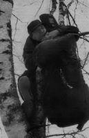 Анатолий Полотно: «Снимите с дерева певца!»