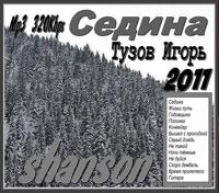 Игорь Тузов «Седина» 2011
