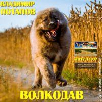 Владимир Потапов «Волкодав» 2017