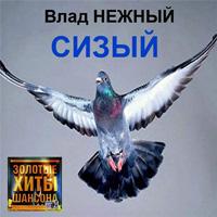 Владимир Нежный (Благовест) «Сизый» 2015